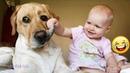 Смешные видео 2021 ● Приколы с животными - Самые милые собаки и дети, смешные моменты из жизни детей