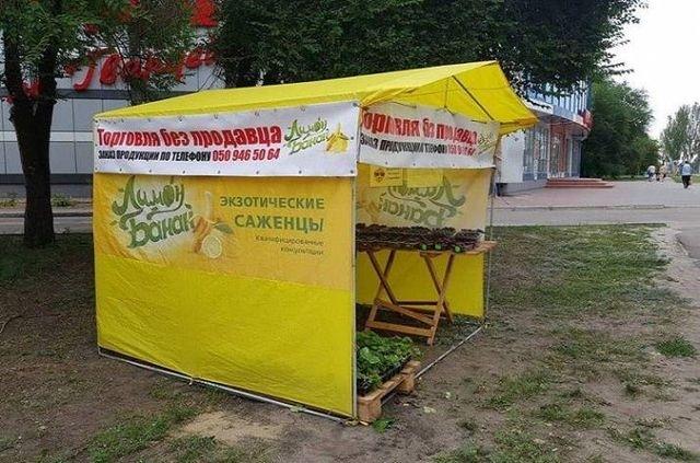 В Северодонецке расположилась торговая палатка без продавца (фото)