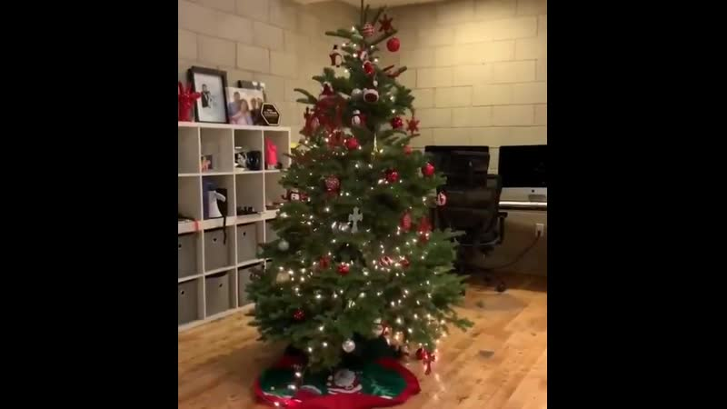 How to put the star on chirstmas tree