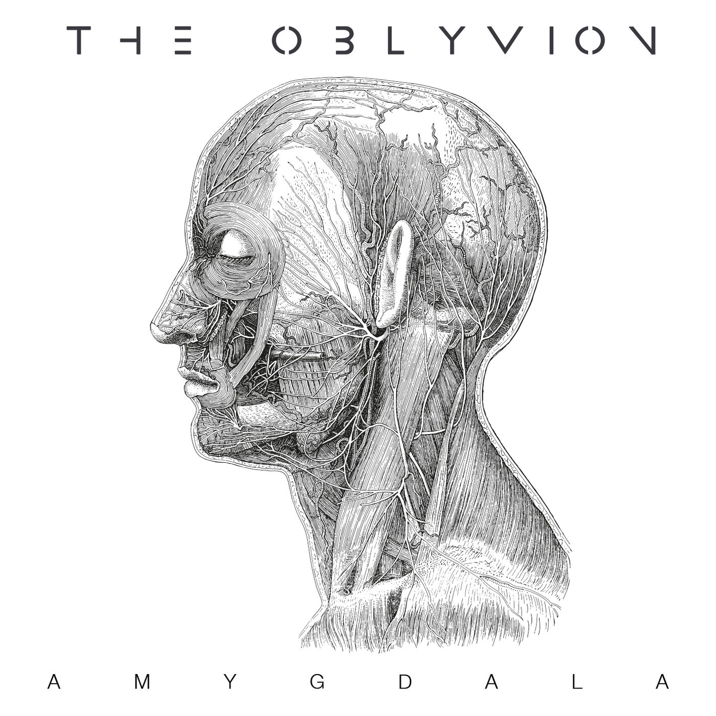 The Oblyvion - Amygdala (2020)