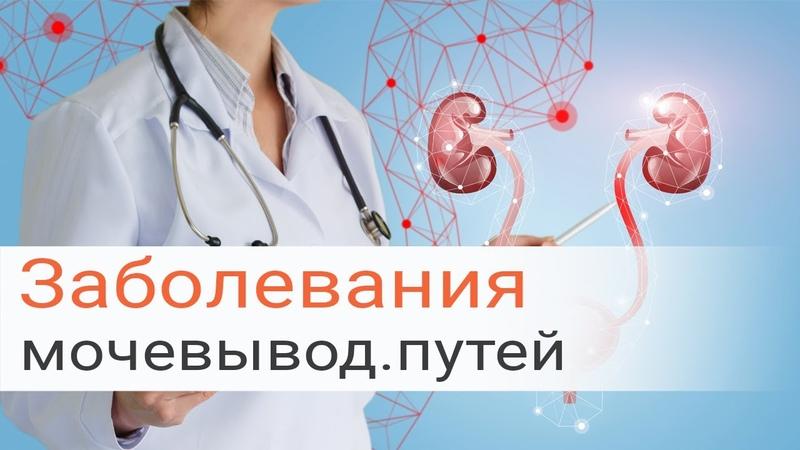 Диагностика и лечение воспалительных заболеваний мочевыводящих путей у женщин