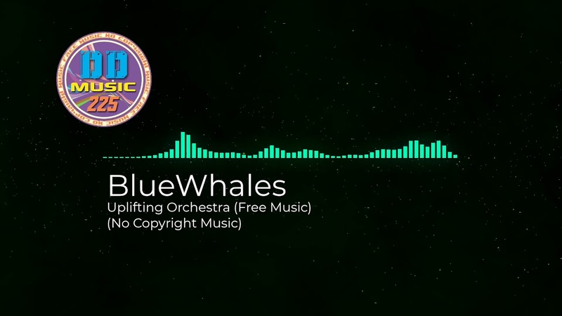 No Copyright Music BlueWhales Uplifting Orchestra Free Music