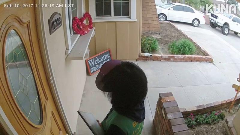Dog Jumps Through Door at Solicitor
