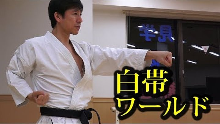 空手白帯のみんな!中達也先生に正拳突きを教わろう!Seiken zuki by Tatsuya Naka Shiro obi world