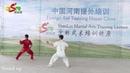 Shaolin Yin hand Stick 2