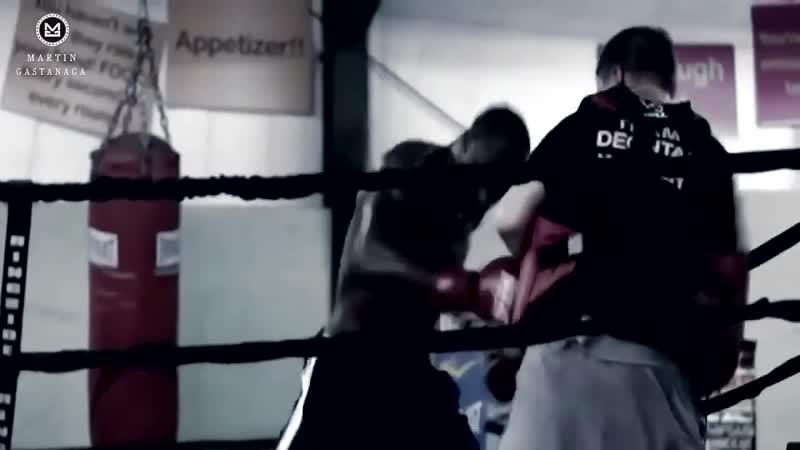 Mike Tyson vs Deontay Wilder Tribute