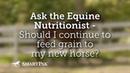 Нужно ли кормить лошадь зерном Should I continue to feed grain to my new horse