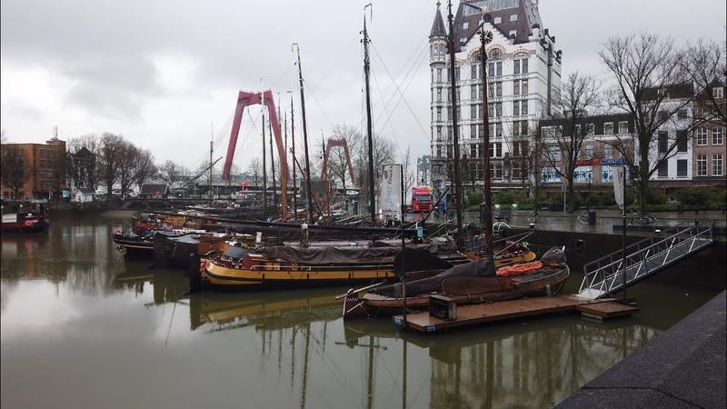 Walking in Rainy Rotterdam ☔   The Netherlands - 4K60