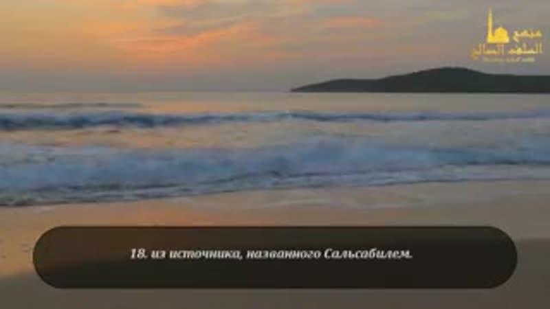 Сура 76 «Человек» Омар Хишам аль-Араби.240.mp4