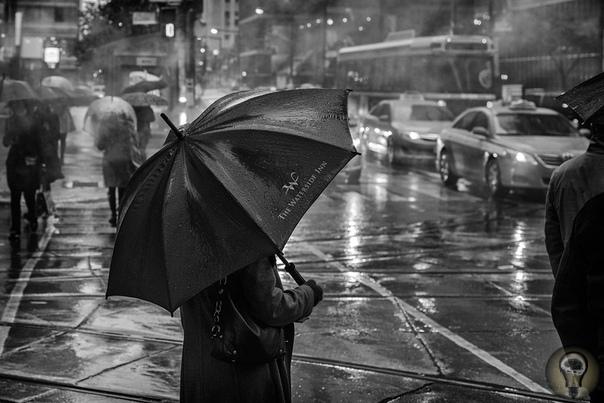 Интересные факты про дождь