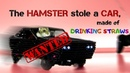 The HAMSTER stole a CAR made of DRINKING STRAWS How to make a TOY CAR on the REMOTE CONTROL