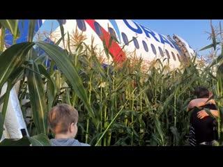 Погибших при аварии самолёта, летевшего в Симферополь, нет
