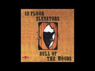 The 13th Floor Elevators - Bull of the Woods (1969)