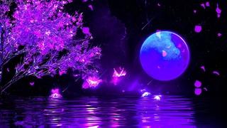 Good Night Music | Calm Deep Sleep Music | 528Hz Positive Energy Sleeping | Meditation Healing Music