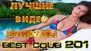 Лучшие видео приколы Best Coub Compilation | Смешные Моменты |Куб|Коуб| №201 TiDiRTVLIVE