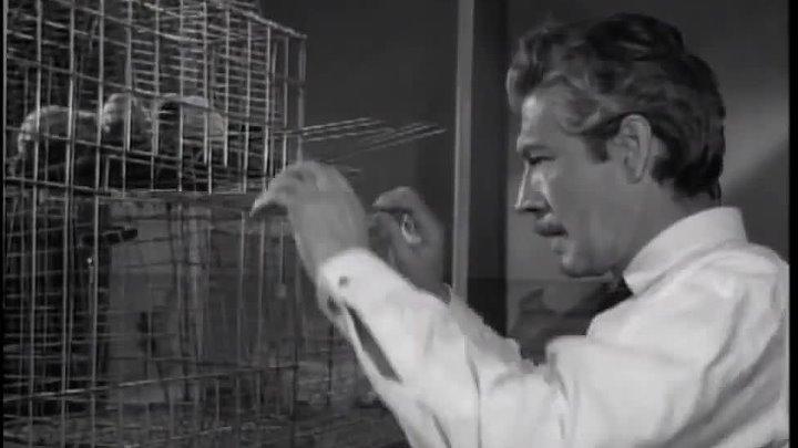 El hombre que logró ser invisible (1958)