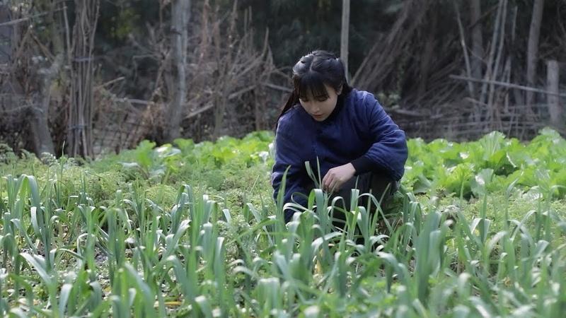 Laba congee, the heavy fragrance will stick to the chopsticks一碗腊八粥,黏得住筷子的浓香,暖心又暖胃|Liziqi channel