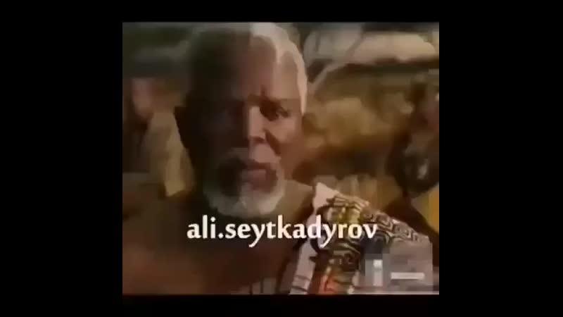 T0p.video0oB8PDuklFOwk.mp4