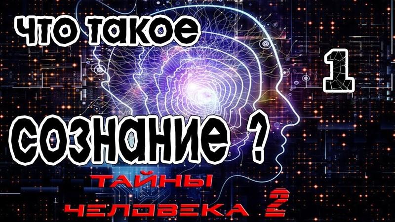 Что такое сознание (1)
