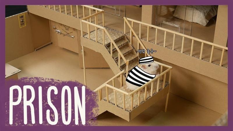 햄스터 콩이 감옥탈출 Hamster KONG Prison break