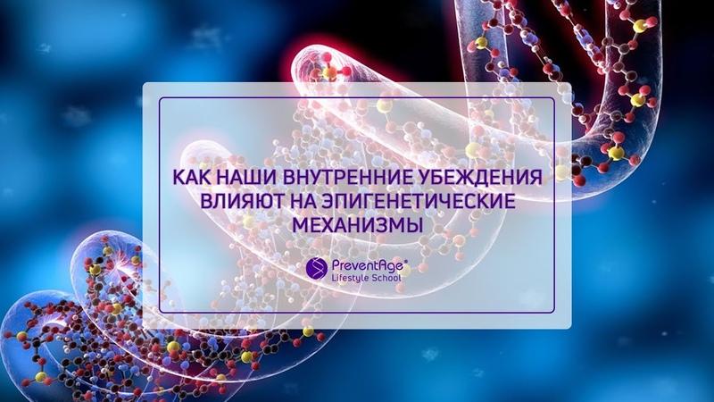 Как наши внутренние убеждения влияют на эпигенетические механизмы (Ирина Мальцева)