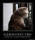 Фотоальбом Владимира Сорокина