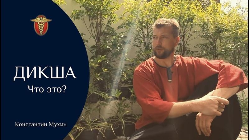 Что такое дикша Константин Мухин