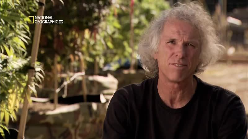National Geographic Взгляд изнутри Лечебная марихуана 2011