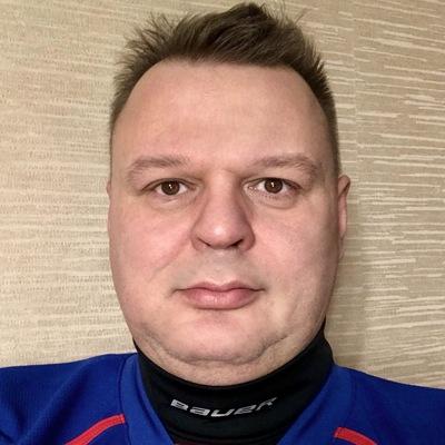 Рисунок профиля (ThePaulsoft)