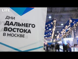 """""""Дальний Восток - молодость России"""". Открытие фестиваля"""