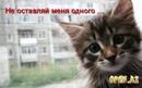 Кристина Уткина
