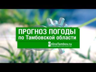 Прогноз погоды в Тамбове и Тамбовской области на 26 апреля 2021 года