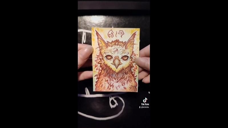 Арол грифон карточка