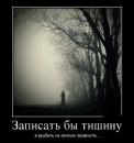 Фотоальбом Александра Никитина