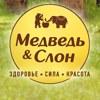 Медведь & Слон