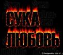 Личный фотоальбом Мити Кулакова