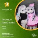 Фотоальбом Натальи Зайкиной