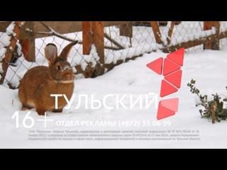 Татьяниада 2018. День студента в Тульском Кремле. Прямая трансляция.