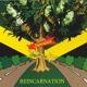 Reincarnation - Bob Marley