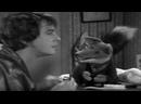 The Basil Brush Show - S07E07 - 3rd February 1973