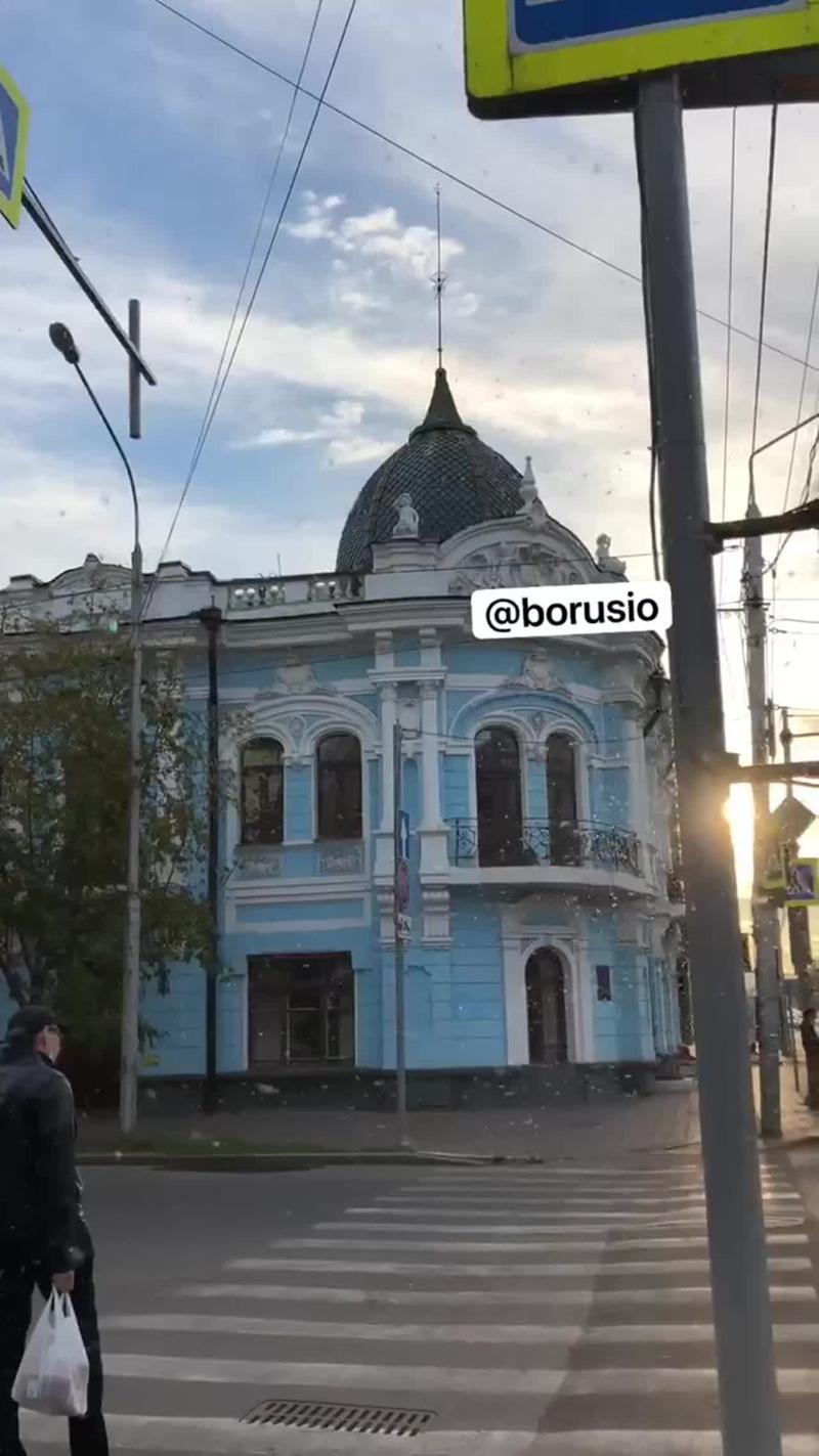 Нашествие тли в Красноярске
