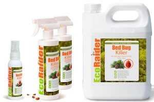Как выбрать лучший инсектицид против постельных клопов?