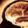 Stimulas: мотивация и развитие личности