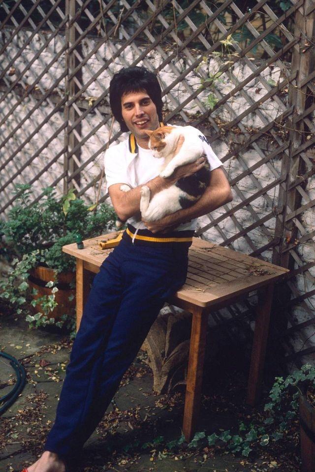 5 сентября 1946 года родился Фредди Меркюри (Freddie Mercury, по метрике Frederi...