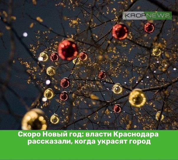 Скоро Новый год: власти Краснодара рассказали, ког...
