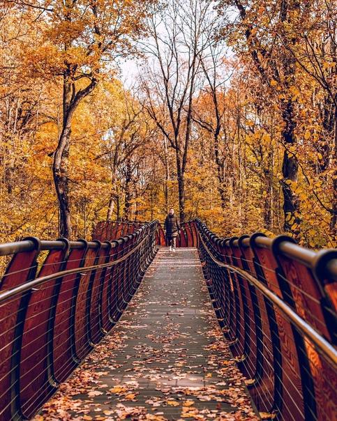 Экотропа на ВДНХ.    Экотропа расположена в зоне Ландшафтного парка «Природа дикая» и позволяет прогуляться... [читать продолжение]