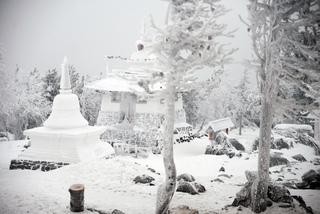 С 8 февраля дежурные общины Шедруб Линг (буддистский монастырь на горе Качканар) покидают комплекс