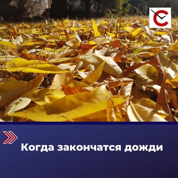 В ближайшие дни в Саратовской области похолодает, ...