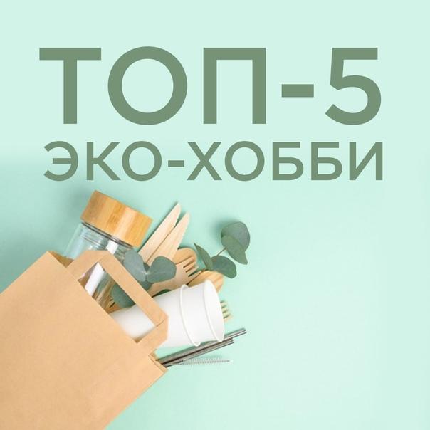Топ-5 экологичных хобби