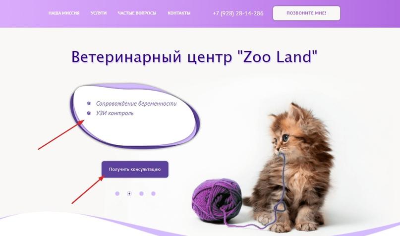 Кейс: комплексное Интернет-продвижение ветклиники ZooLand, изображение №2